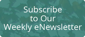 subscribe to Vermont Insight eNewsletter